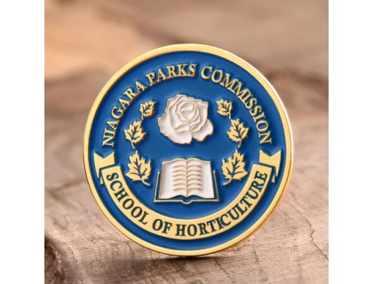School Custom Lapel Pins
